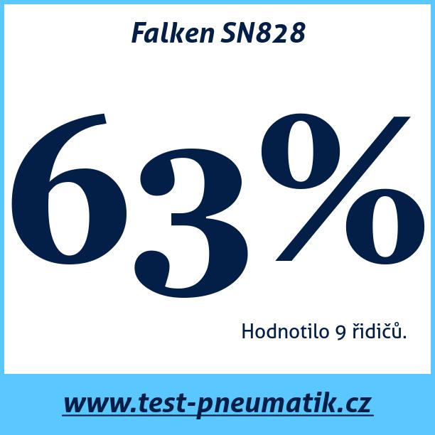 Test pneumatik Falken SN828